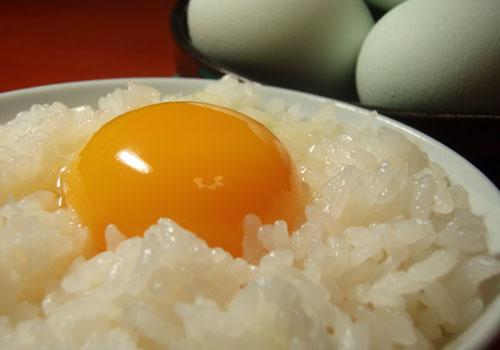 東北牧場の卵がやばい!卵かけごはんが止まらないっ!!