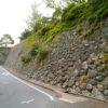 松阪城 石垣と図書館が立派な平山城